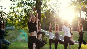 Group of young women are balancing on one leg with raised arm in tree pose. Group of concentrated young women are balancing on one leg with raised arm in tree stock footage