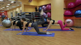 Group of young women in fitness class making slimming workout. stock video