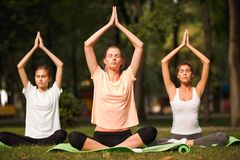 Group of young women practicing yoga, morning meditation in nature at the park stock photography