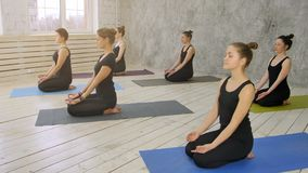 Group of young women practicing yoga, sitting on yoga mat stock image