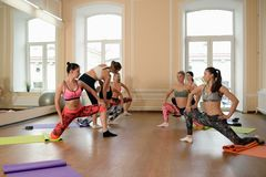 Group young women stretching and practices yoga Royalty Free Stock Images