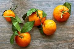 Groupe świezi dojrzali tangerines z gałąź na drewnianym stole Odgórny widok Obrazy Royalty Free