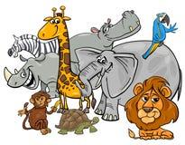 Groupe animal de caractères de safari de bande dessinée Photo stock