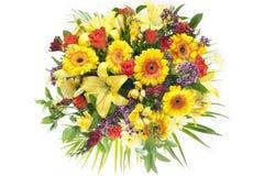 Groupe coloré de fleurs abondantes de source Image libre de droits