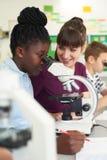 Groupe d'élèves avec la classe de la Science d'Using Microscopes In de professeur photos libres de droits