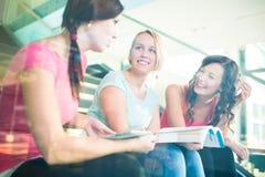 Groupe d'étudiants étudiant dur pour un examen Photos stock