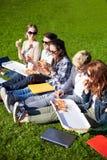 Groupe d'étudiants adolescents mangeant de la pizza sur l'herbe Photos libres de droits