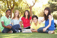 Groupe d'étudiants d'adolescent causant en stationnement Photo stock