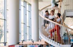 Groupe d'étudiants discutant à la bibliothèque universitaire Photographie stock libre de droits