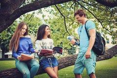 Groupe d'étudiants ethniques multi en parc de ville Photos stock