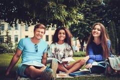 Groupe d'étudiants ethniques multi en parc de ville Images libres de droits