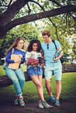 Groupe d'étudiants ethniques multi en parc de ville Photographie stock libre de droits