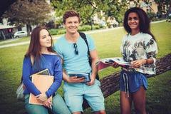 Groupe d'étudiants ethniques multi en parc de ville Images stock