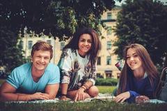 Groupe d'étudiants ethniques multi en parc de ville Image stock