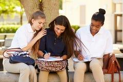 Groupe d'étudiants féminins de lycée travaillant dehors Photos stock