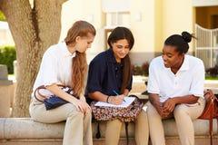 Groupe d'étudiants féminins de lycée travaillant dehors Images stock