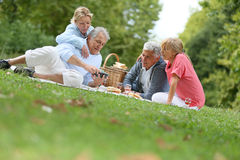 Groupe d'aînés ayant le pique-nique se reposant sur l'herbe Photographie stock libre de droits