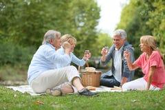 Groupe d'aînés faisant le pain grillé ayant le pique-nique Photo libre de droits
