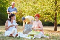 Groupe d'aînés faisant un pique-nique avec des fruits Photographie stock