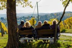 Groupe d'aînés masculins et féminins s'asseyant sur le banc avec la vue en automne Photographie stock libre de droits
