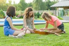 Groupe d'adolescentes heureuses ayant l'amusement dehors avec la guitare Proposé la nouvelle musique, reposez-vous sur la pelouse photos stock