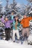 Groupe d'adolescents sautant ensemble dans l'hiver Photos libres de droits