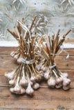 Groupe d'ail se trouvant sur une vieille couleur en bois de brun de table Photo stock