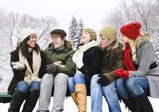 Groupe d'amis à l'extérieur en hiver Photo stock