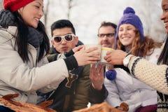 Groupe d'amis appréciant dans la neige en hiver Photographie stock libre de droits
