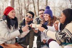 Groupe d'amis appréciant dans la neige en hiver Photos stock
