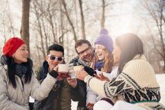Groupe d'amis appréciant dans la neige en hiver Images stock