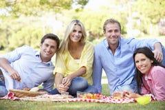 Groupe d'amis appréciant le pique-nique ensemble Image stock