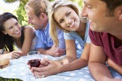Groupe d'amis appréciant le pique-nique ensemble Photos stock