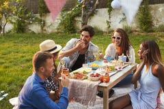 Groupe d'amis appréciant le pique-nique extérieur dans le jardin Photographie stock