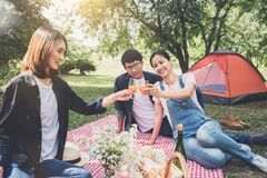 Groupe d'amis appréciant le pique-nique tout en buvant d'un jus d'orange o Photos stock
