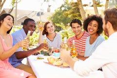 Groupe d'amis appréciant le repas à la partie extérieure dans l'arrière cour Photographie stock libre de droits