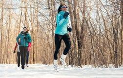 Groupe d'amis appréciant pulsant dans la neige en hiver Photo libre de droits