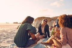 Groupe d'amis ayant l'amusement à la partie de plage Photos stock