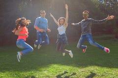 Groupe d'amis ayant l'amusement et sautant au jour idyllique Photos stock