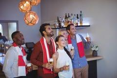 Groupe d'amis ayant la bière tout en regardant la rencontre au restaurant de barre Photographie stock libre de droits