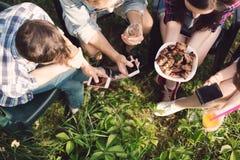 Groupe d'amis ayant le pique-nique dans le parc Photographie stock