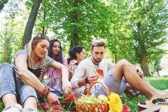 Groupe d'amis ayant le pique-nique dans un parc un jour ensoleillé - les gens traînant, ayant l'amusement tout en grillant et dét Image stock