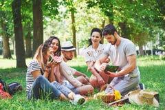 Groupe d'amis ayant le pique-nique dans un parc un jour ensoleillé - les gens traînant, ayant l'amusement tout en grillant et dét Photo libre de droits