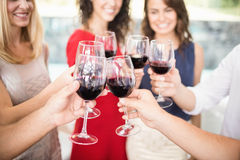 Groupe d'amis ayant le vin Images stock