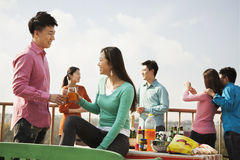 Groupe d'amis ayant un barbecue sur un dessus de toit Photographie stock libre de droits