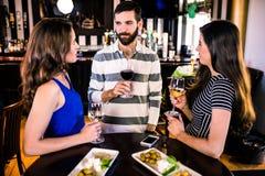 Groupe d'amis ayant un verre de vin Photo libre de droits