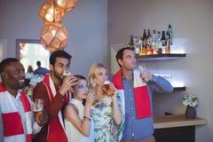 Groupe d'amis buvant de la bière tout en regardant la rencontre Image libre de droits