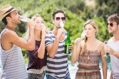 Groupe d'amis buvant du champagne Photographie stock