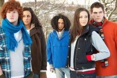 Groupe d'amis d'adolescent ayant l'amusement Images libres de droits