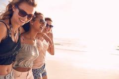 Groupe d'amis des vacances de plage Images stock